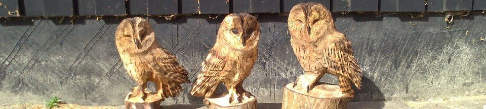 Chainsaw carvings luke chapman woodcarver sculptor